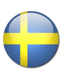 3 Months Dedicated VPN Stockholm, SE